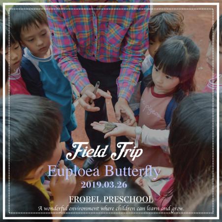 [2019] 戶外教學-紫斑蝶探索趣-Euploea Butterfly