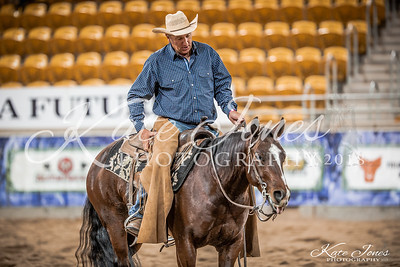NCHA Cutting Futurity (Finals)