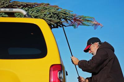 20141129 - Tree picking Oney's (KG)