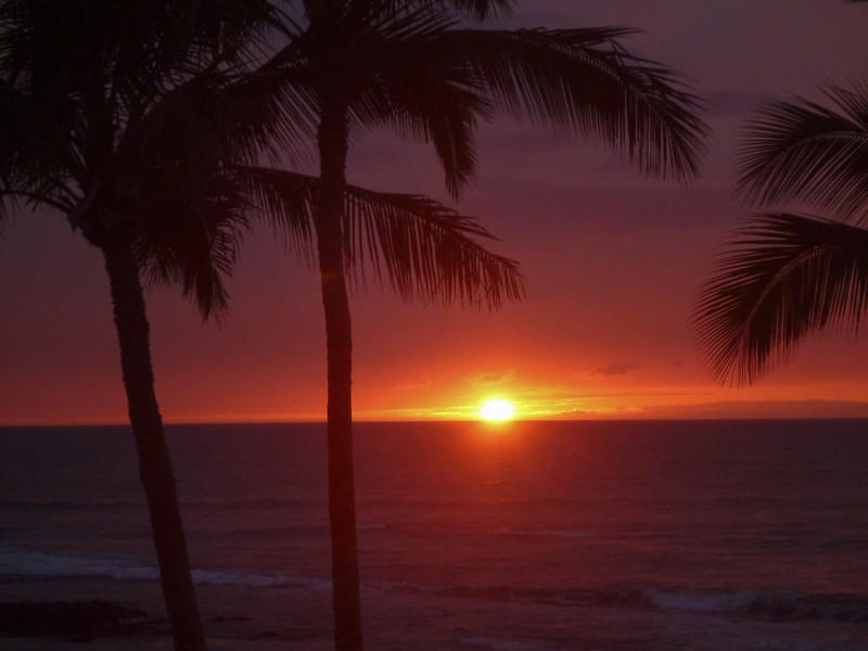 Hawaii - 061612 - 752.jpg