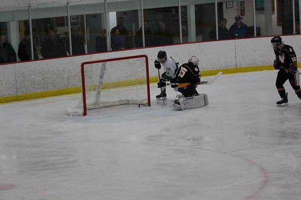 LDC boys hockey vs. Waconia, 2-3-17