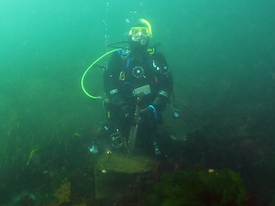 Edmonds Underwater Park