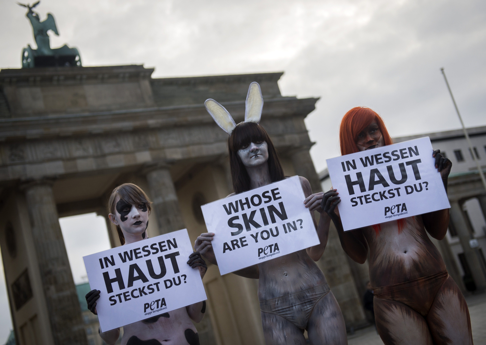 """. Activists from People for the Ethical Treatment of Animals (PETA) protest, wearing body paint that looks like animal fur, at the Brandenburger gate opposite the venue hosting Berlin fashion week in Berlin on January 14, 2014. With posters saying \""""who\'s skin are you in\"""" PETA advocates a vegan approach to clothes manufacturing and fashion.    (ODD ANDERSEN/AFP/Getty Images)"""