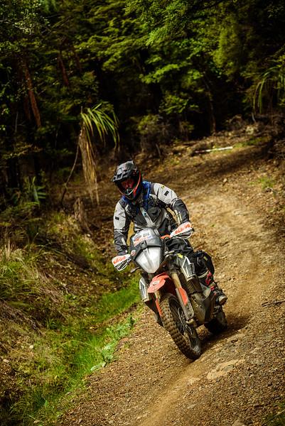2019 KTM New Zealand Adventure Rallye (1308).jpg