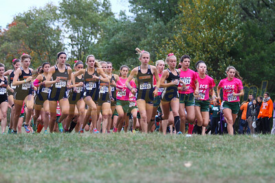 2015 Northville vs Novi HS XC Dual Meet - October 13, 2015