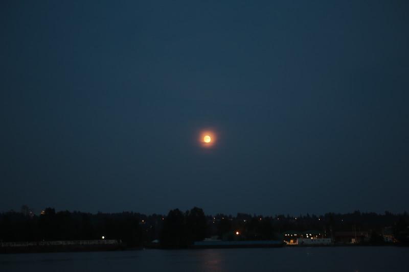 moon at fraser river.JPG