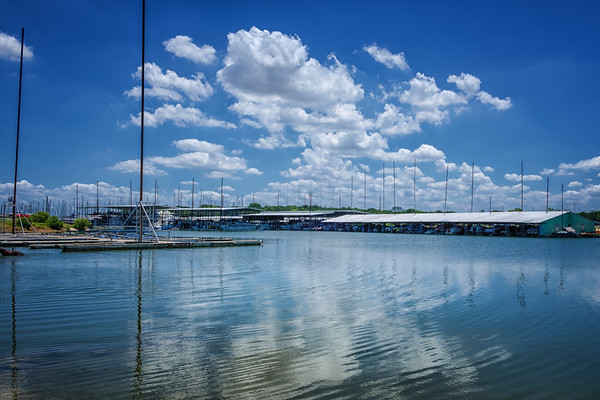Grapevine - Marina - June 2018