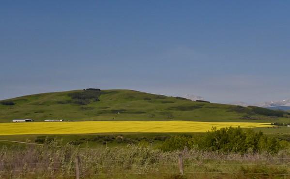 Grass Pass  - Kananaskis Country