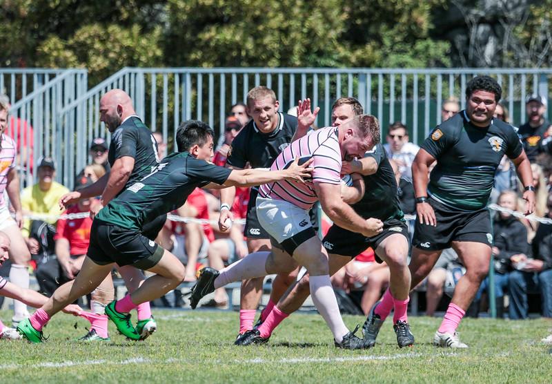 Santa Monica Rugby Team vs. Olympic Rugby Team.
