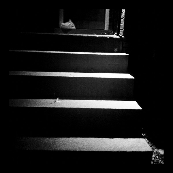 Stairs in the night. Who says dark isn't good for photography?
