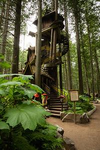 Shuswap Tourism - Enchanted Forest