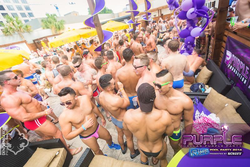 2014-05-10_purple06_692-3255138683-O.jpg