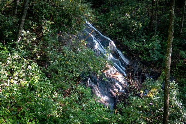 Caney Bottom Trail (#361)
