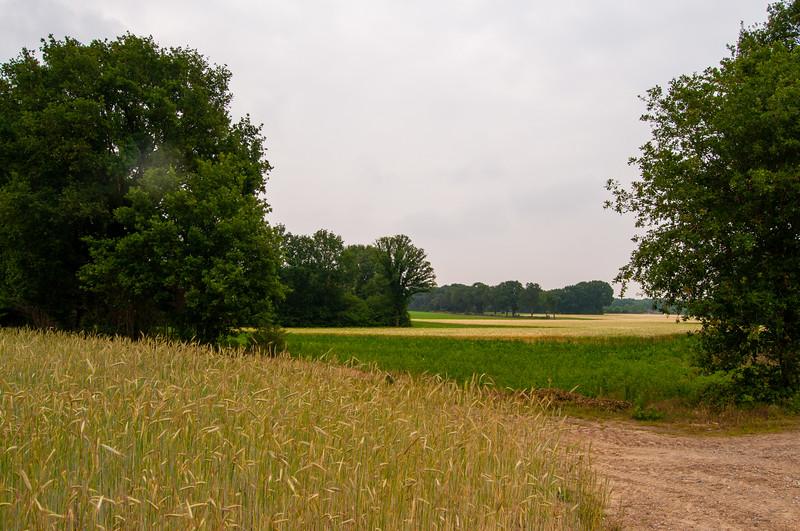 Itterdal & Solterheide, omgeving Opitter en Neerglabbeek 23.jpg