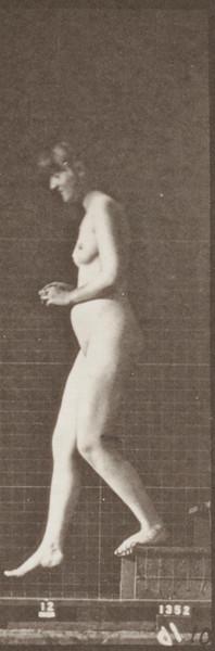 rbm-QP301M8-1887-128a~10.jpg