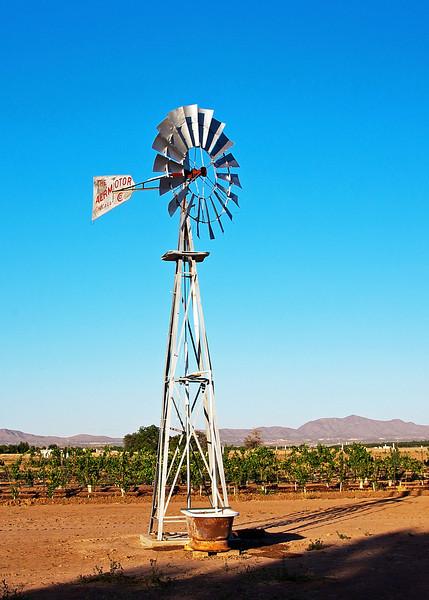 IMG_5592 windmill crp.jpg