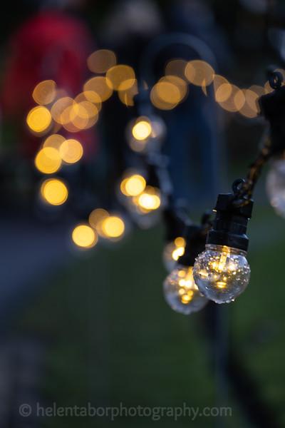 Winter Wonderland daytime-54.jpg
