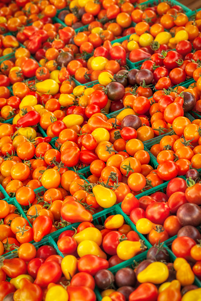 Farmers Market 3292, Campbell, California, 2010