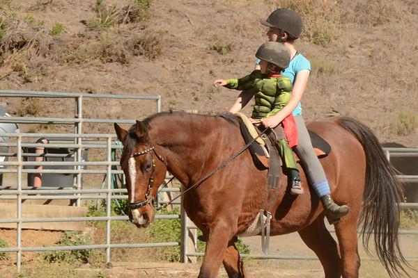 Horse Kid Volunteer trifecta