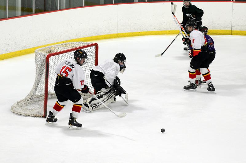 130223 Flames Hockey-101.JPG