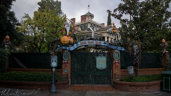 Disneyland Resort, Disneyland, New Orleans Square, Haunted Mansion, Haunted Mansion Holiday, Haunted, Mansion