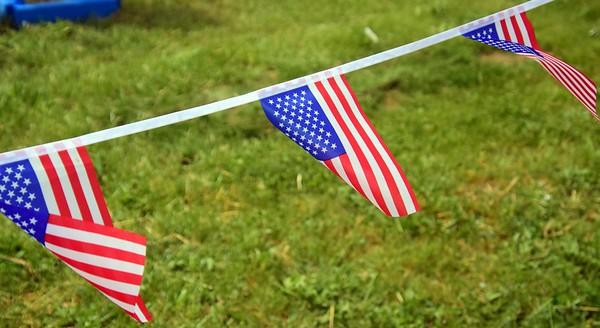 'Saluting Sailor' honors Memorial Day in Taylor 2020