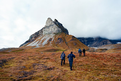 Magical Svalbard on Film