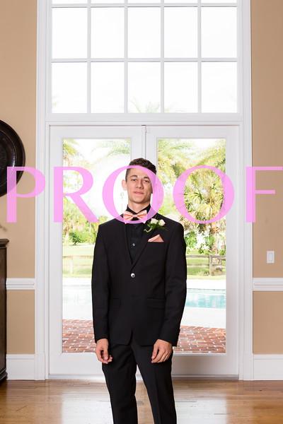 Prom 2019-35.jpg
