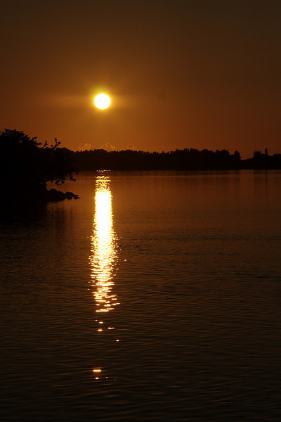 20100911 Sunrise & Cicadas
