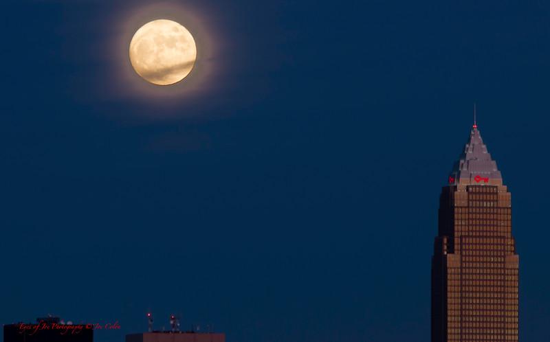 Moon Over Xmas-3.jpg