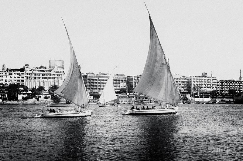 Feb282013_egypt_6376.jpg