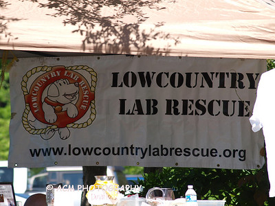 Lowcountry Lab Rescue on Johns Island 2012
