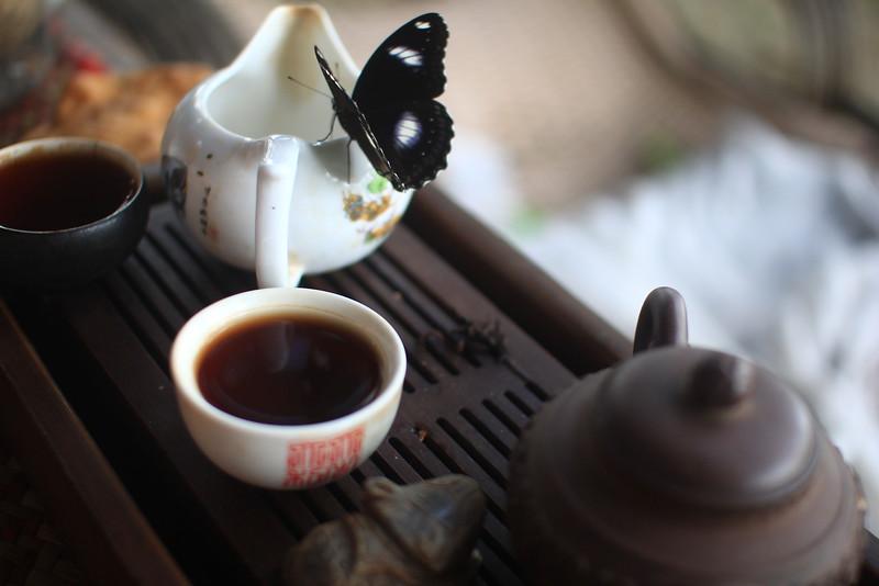 nature immorte tea.JPG