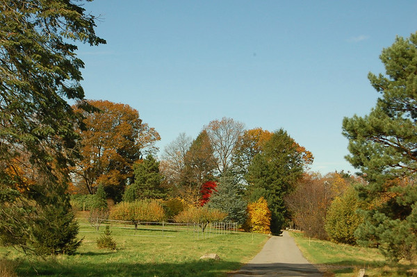 Eustis Estate Fall 2008