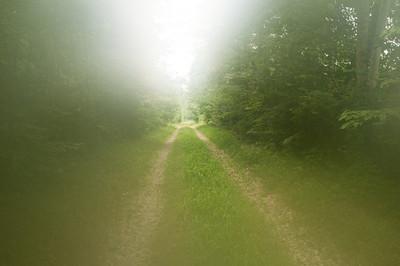 2011.07.Indiana