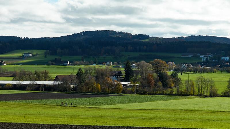 Frauenfelder Militärwettmarsch 2014.  »Der Frauenfelder«. Frauenfeld – Wil – Frauenfeld. Schweiz, 16. November 2014.