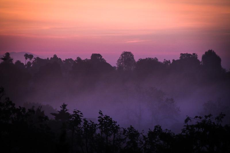 February 11 - Foggy sunrise.jpg