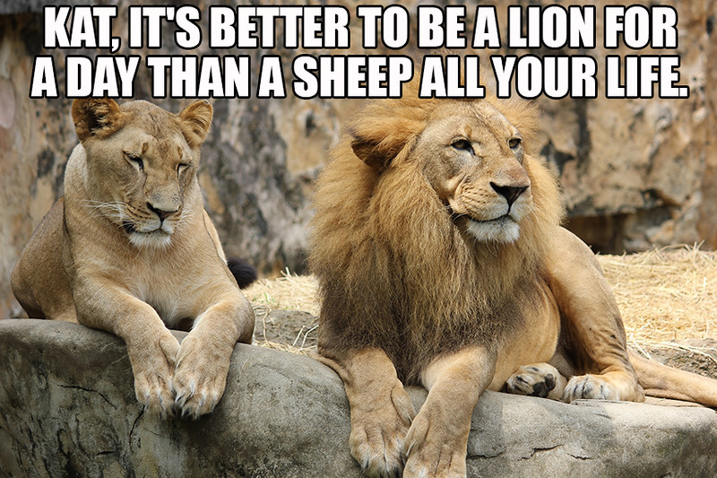 Lion For A Day.jpg