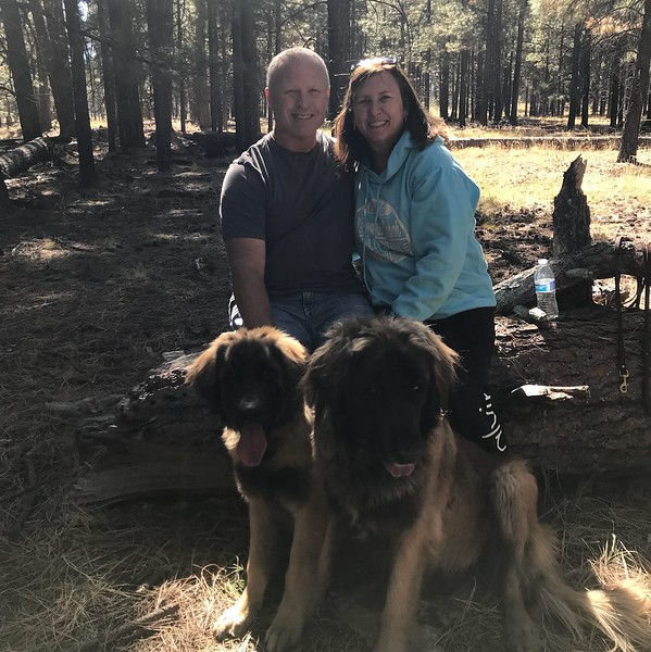 Ranger (Brown) and Brielle (A Litter, Red) with family.