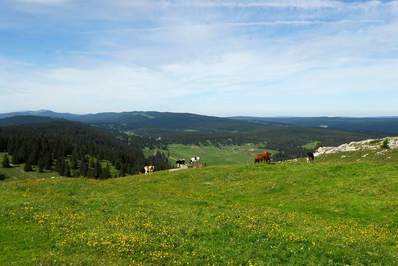 070626 7255 Switzerland - Geneva - Downtown Hiking Nyon David _E _L ~E ~L.JPG