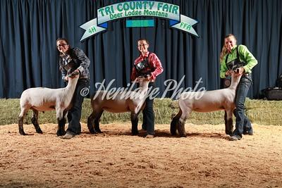 Tri  County Fair 2018