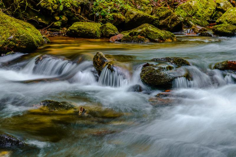 FRESH WATER   48