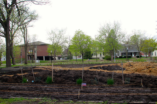 Second Garden Planting Day 2013