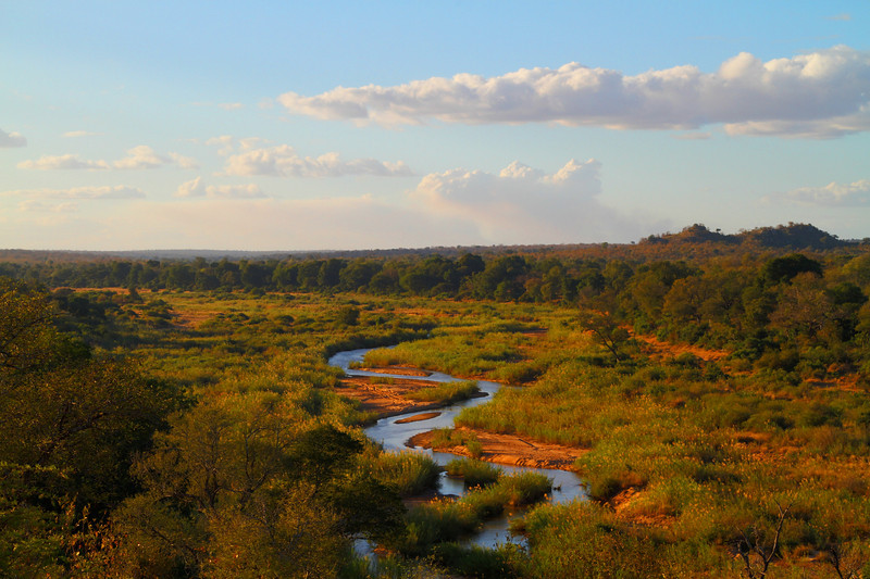 Sand River, MalaMala Game Reserve, South Africa