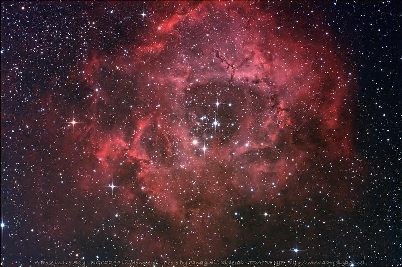 NGC2244 in Monoceros.jpg