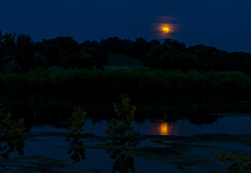 moon - full solstice moon at speedwell forge (p).jpg