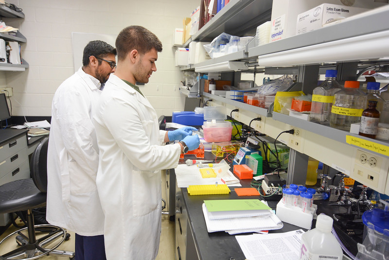 CHIRP 2019 labs025.JPG