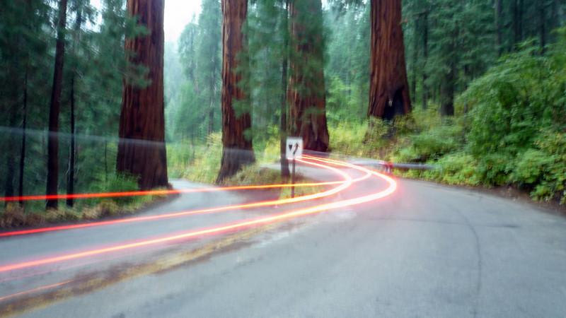 car in sequois2.JPG