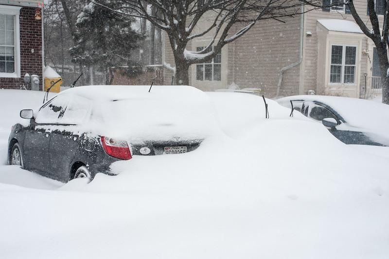 Snowzilla-3.jpg