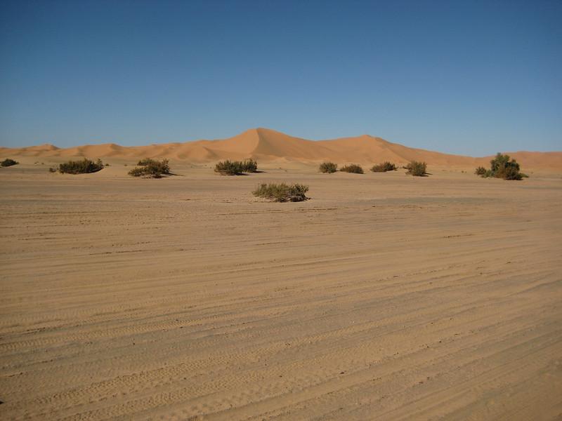 Day4-Sahara-38.jpg
